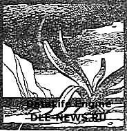 Смерть грызунам (морской лук)