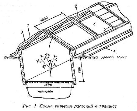 Сооружение зимнего укрытия.