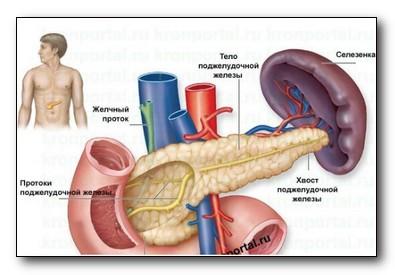 Селезенка лечение