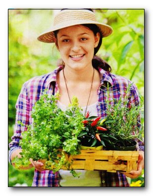 Травы против женских недугов