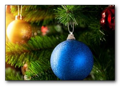 Вся польза новогодней елки