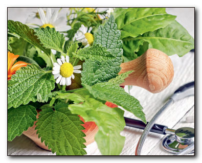 Травы для здоровья