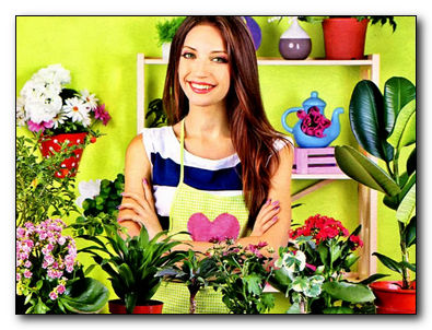 Растения для очистки